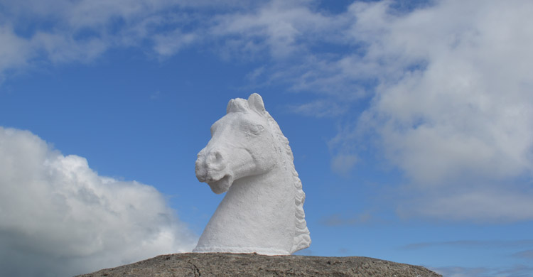 Stone Horse Head at the Dingle Races Entance.